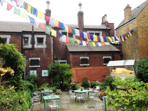Jamyang courtyard cafe